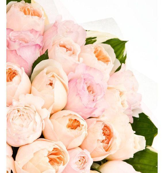 Букеты роз дэвида остина, цветы рябчики купить украина