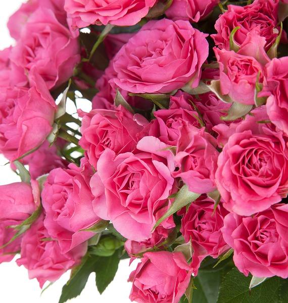 Букет Розовое настроение (25, 51 или 101) – фото № 3