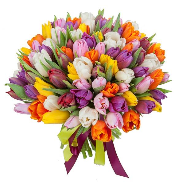 Букет из тюльпанов Краски любви (75 или 101) – фото № 2