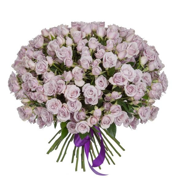 Букет кустовых роз Silver Shadow (25, 51 или 75) – фото № 4