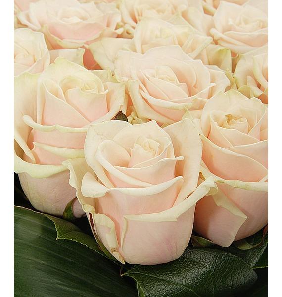 Композиция Нежно любимой (25 или 51 роза) – фото № 5