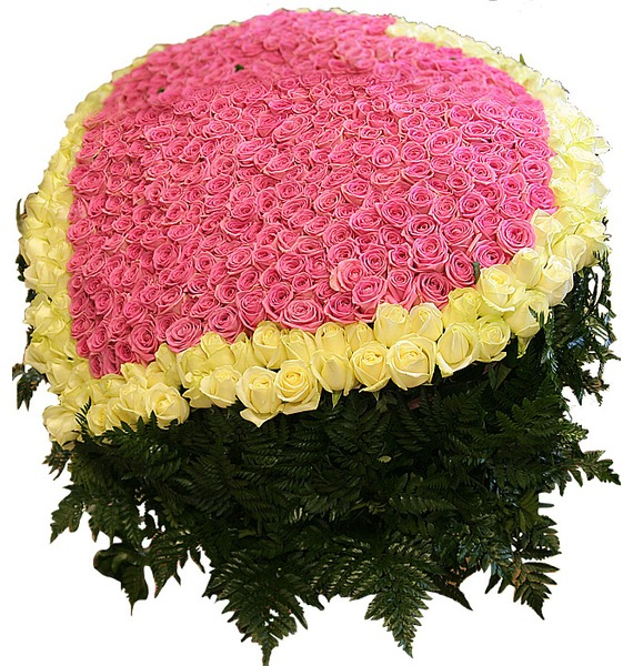 Композиция Импульс любви (501 роза) – фото № 3