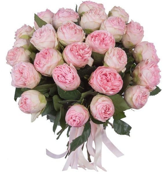 Букет из пионовидныз роз Bridal Piano (15, 25 или 51) – фото № 1