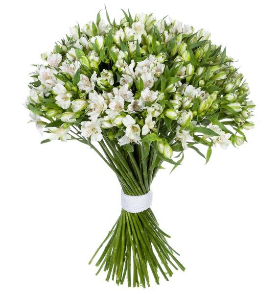 Bouquet Brilliant (25, 51 or 101 alstroemeria) – photo #3