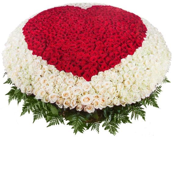Композиция Мое сердце - тебе (1001 роза) композиция из 501 или 1001 желтой розы золото