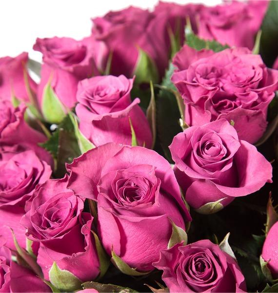 Букет роз Ascot – фото № 3
