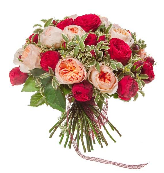 Букет из пионовидных роз Единственная (15, 25 или 51) – фото № 4