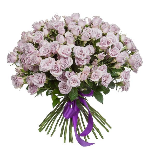 Букет кустовых роз Silver Shadow (25, 51 или 75) – фото № 3