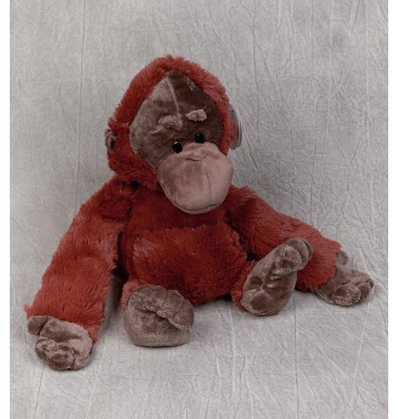 Мягкая игрушка Горилла Игнат (22 см) игрушка