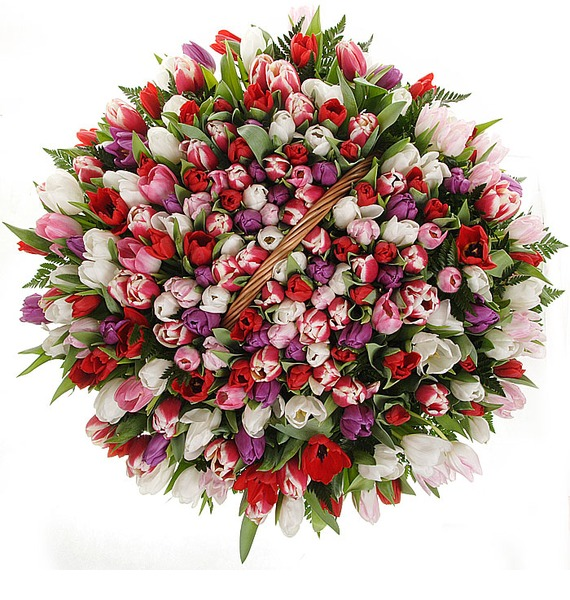 Композиция из 201 тюльпанa Весна моей души... – фото № 4