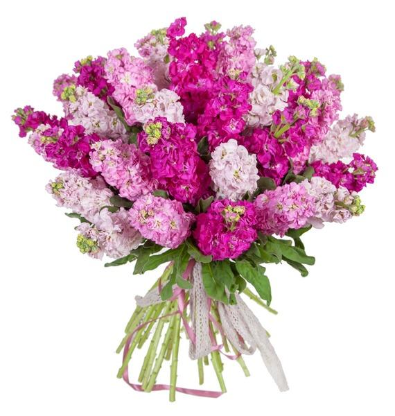 Букет Розовый джем (15, 25 или 51) – фото № 5