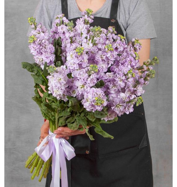 Букет лиловой маттиолы (15, 25 или 51) цена