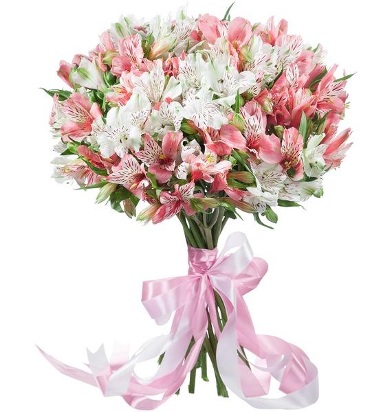 Bouquet of alstroemeria Pearl – photo #1