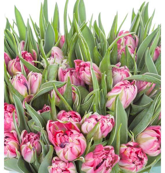 Пионовидные тюльпаны Flash Point в вазе – фото № 5