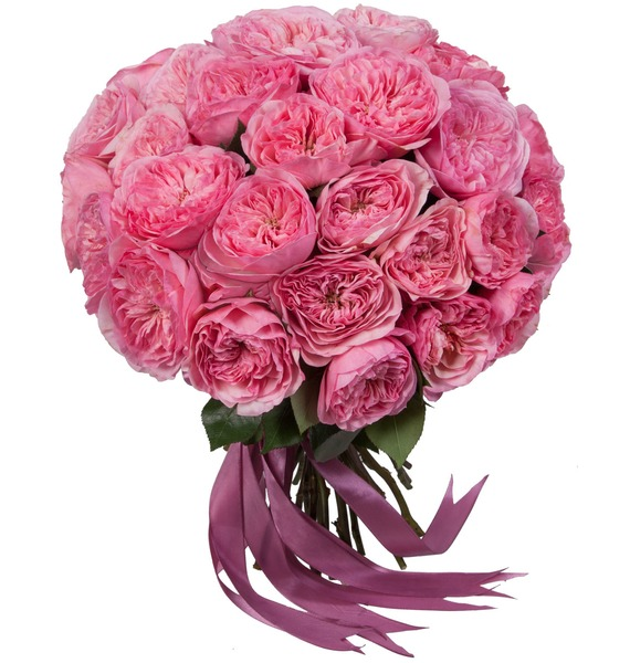 Букет пионовидных роз Maria Theresia (15, 25 или 51) букет лизиантусов 15 25 или 51