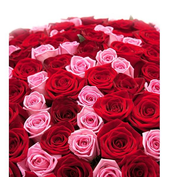 Букет из 101 розы Импровизация – фото № 4