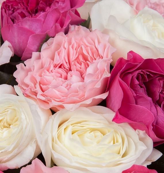 Букет из пионовидных роз Феерия (15, 25 или 51) – фото № 4