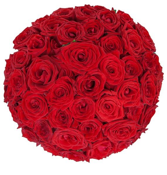 Букет роз Для Вас! (25, 51 или 75) – фото № 5