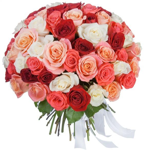 Букет Персиковое лето (25, 51, 101 роза) 101 роза мишка в подарок