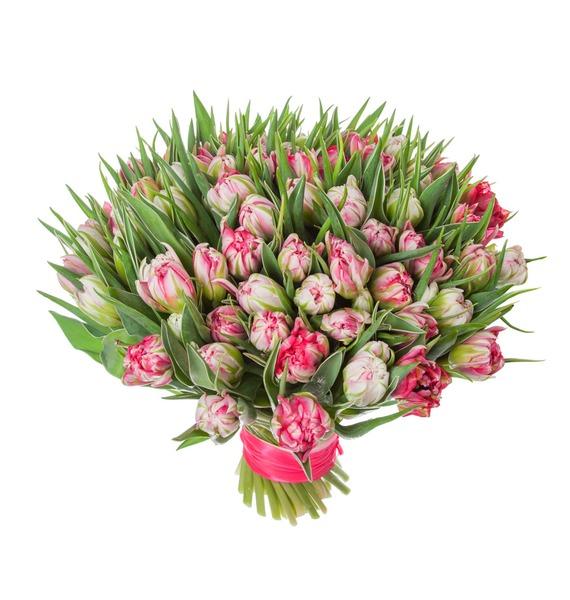 Букет пионовидных тюльпанов Flash Point (25, 51 или 101) – фото № 5
