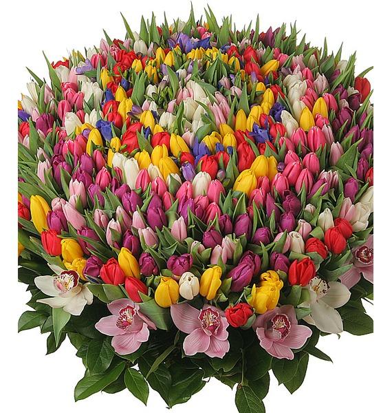 Композиция из 301 тюльпана Счастливая весна – фото № 1