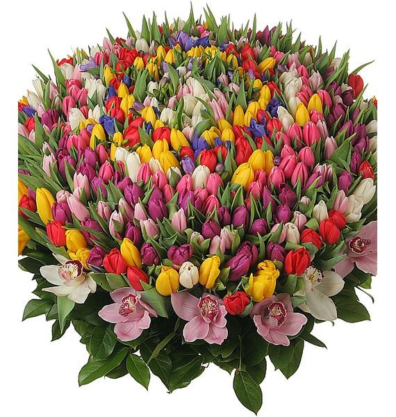 Композиция из 301 тюльпана Счастливая весна – фото № 5