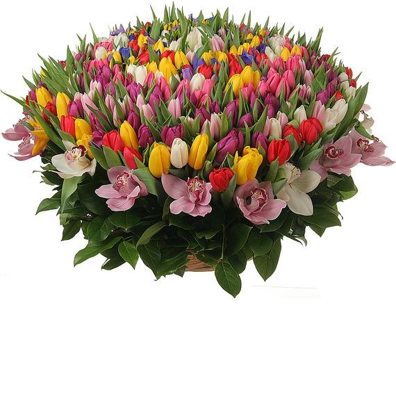 Композиция из 301 тюльпана Счастливая весна – фото № 4