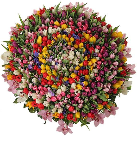 Композиция из 301 тюльпана Счастливая весна – фото № 3