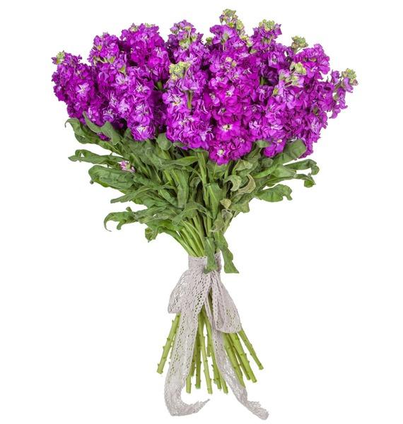 Букет фиолетовой маттиолы (15, 25 или 51) – фото № 5