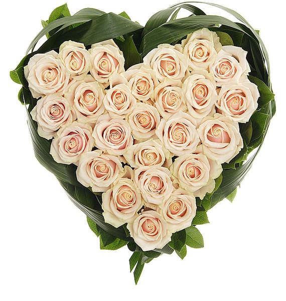 Композиция Нежно любимой (25 или 51 роза) – фото № 1