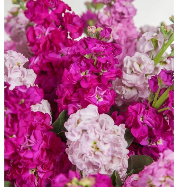Букет Розовый джем (15, 25 или 51) – фото № 2