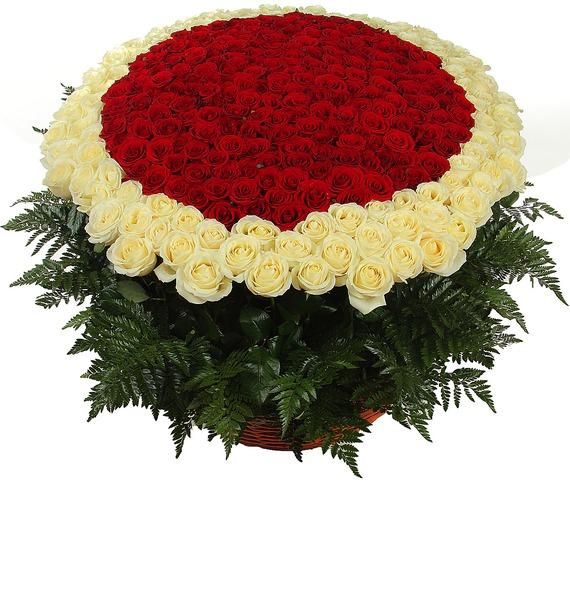 Композиция Море цветов (301 роза) композиция cappucino 101 201 301 роза