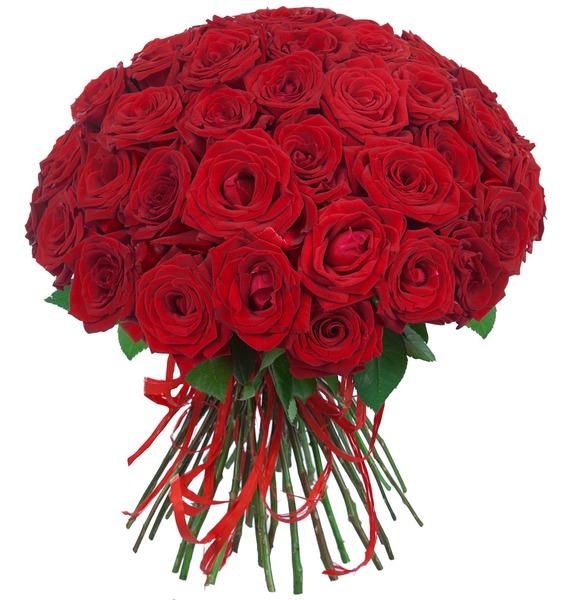 Букет роз Для Вас! (25, 51 или 75) – фото № 1
