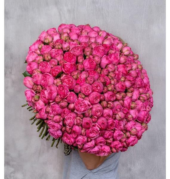 Bouquet of 151 pion-shaped roses Pink Piano – photo #1