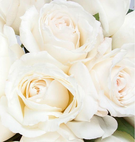Букет ароматных пионовидных роз Princess Miyuki – фото № 4