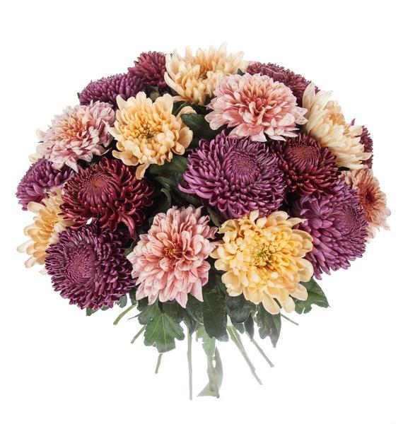 Букет одноголовых хризантем Осенний калейдоскоп (21, 35 или 51) – фото № 5