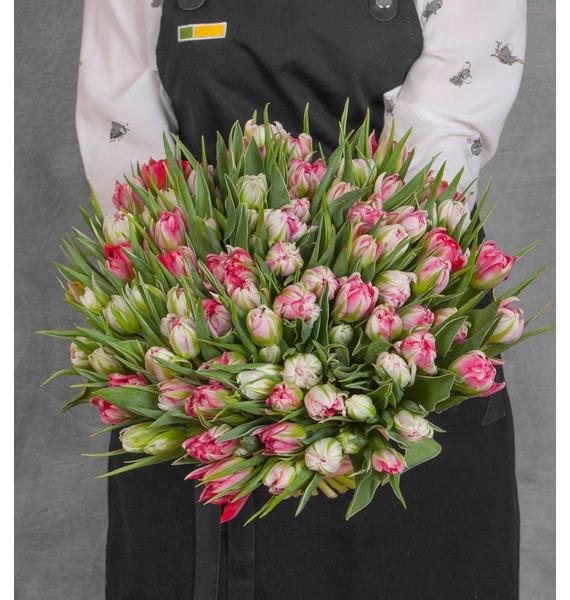 Букет пионовидных тюльпанов Flash Point (25, 51 или 101) букет из тюльпанов солнечный сюрприз 25 51 101