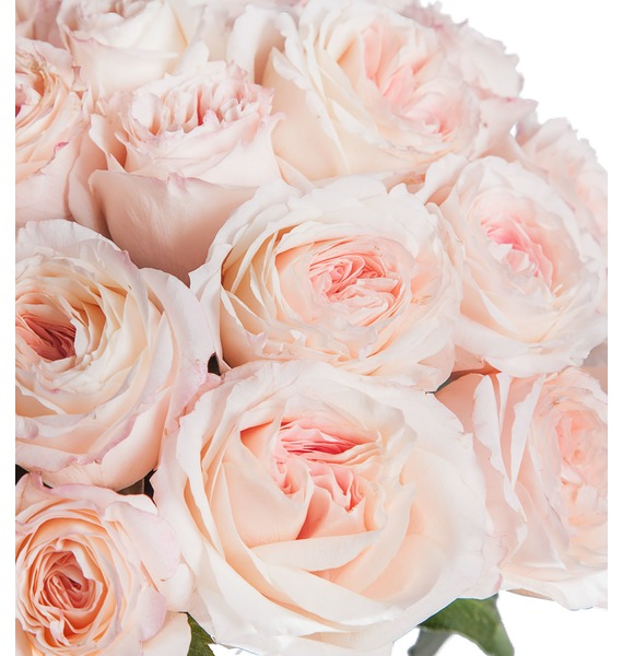 Bouquet of pion-shaped roses Mayras Bridal (15, 31 or 51) – photo #2