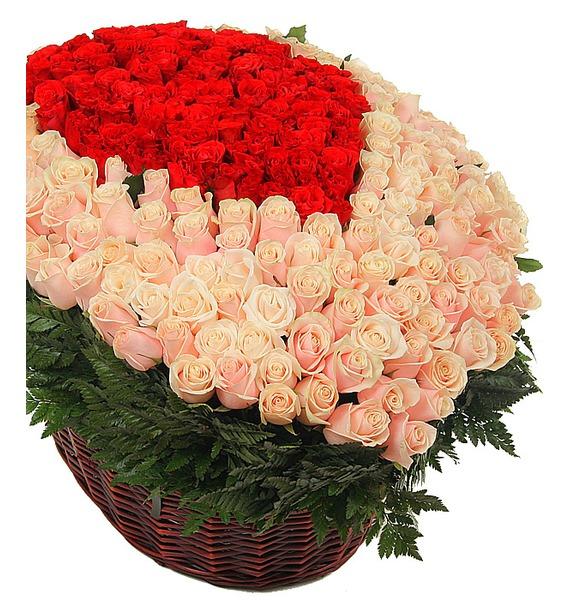 Сomposition of 1501 Roses Flower desires – photo #2