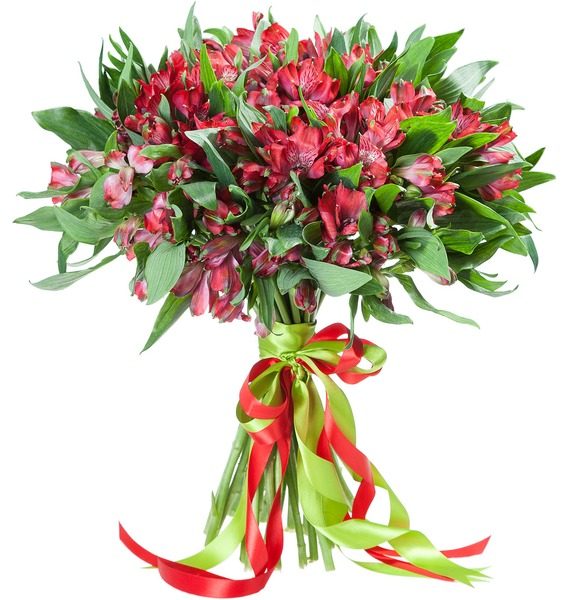 Bouquet Red Arrow – photo #2