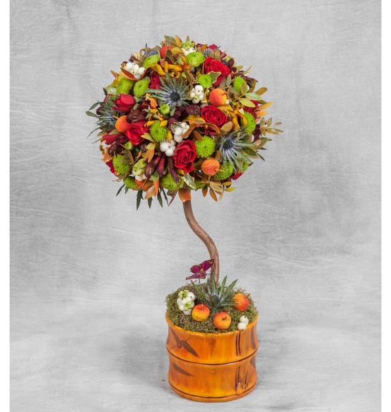 "Композиция ""Дерево желаний"" карликовое дерево flower 5 cucurbita b032"
