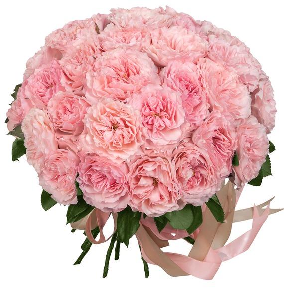 Букет из пионовидных роз Mayras Rose (15, 25 или 51) – фото № 1