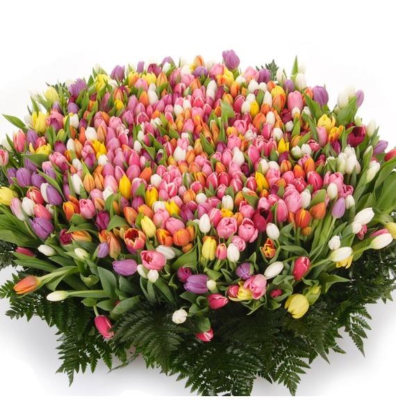 Композиция из 501 тюльпана Бесконечно люблю! кабель 3 5 на два тюльпана