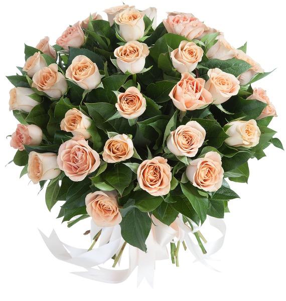 Букет роз Cappucino (35 роз)