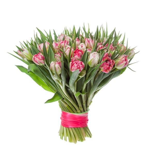 Букет пионовидных тюльпанов Flash Point (25, 51 или 101) – фото № 4