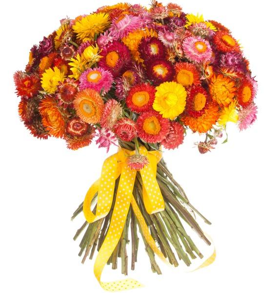 Букет из 101 Helichrysum – фото № 4