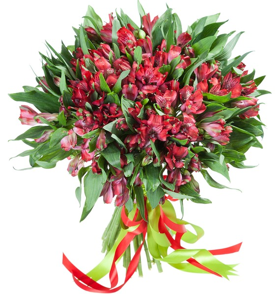 Bouquet Red Arrow – photo #1