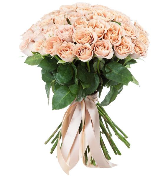 Букет роз Cappucino (25, 51 или 101) – фото № 2