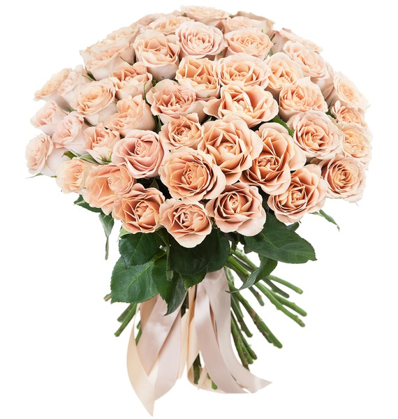 Букет роз Cappucino (25, 51 или 101) букет лизиантусов 15 25 или 51