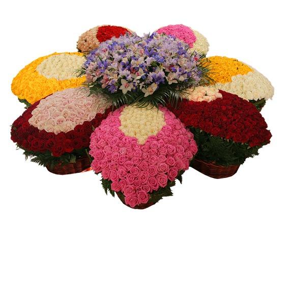 Композиция из роз и орхидей Цветок желаний eglo calnova 94715